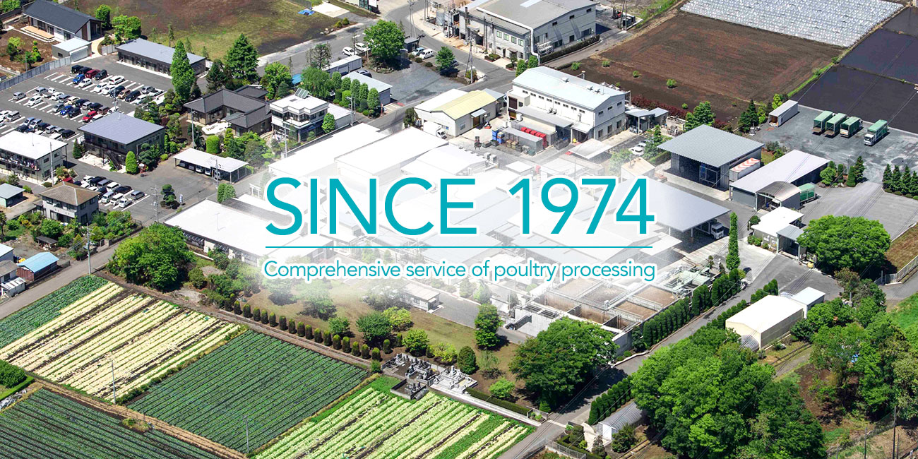SINCE 1974, Comprehensive service of poultry processing